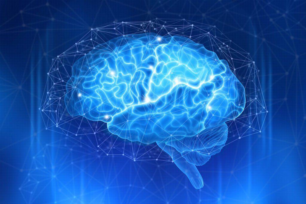 Neuroscience In Dentistry